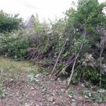 Расчистка участка, подготовка под огород, Тюмень