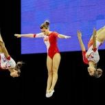 Занятия в секции «Акробатика» и «Прыжки на батуте»,ОФП и растяжка, Тюмень