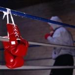 Индивидуальные тренировки по боксу, Тюмень