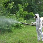 Обработка территории от клещей и комаров, Тюмень