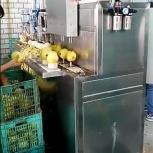 Машина для яблоко чистки и удаления сердцевины 400 кг/час, Тюмень