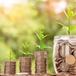 Ищем инвесторов в прибыльный бизнес. Платим 13.5-15% годовых., Тюмень