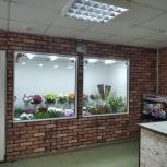 """Магазин """" Цветы и бабочки"""", Тюмень"""