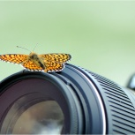 Обучение фотографа, Тюмень
