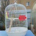 Клетка для птиц, Тюмень