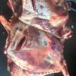 Мясо говядины, Тюмень