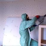 Уничтожение муравьев в квартире, Тюмень