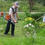 Скос травы и уборка территорий, Тюмень