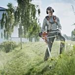 Выкос травы, спил кустарников, Тюмень