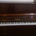 продам Пианино-Тюмень, Тюмень
